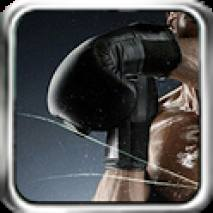Boxing Mania Cover