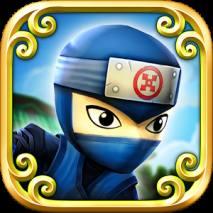 Ninja Shuriken dvd cover