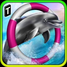 Dolphin Racing 3D dvd cover