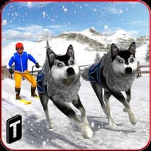 Sled Dog Racing 2017 dvd cover