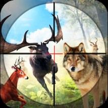 Safari Wild Animal Hunting 3D Cover