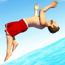 Flip Diving dvd cover